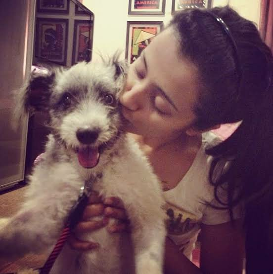 Trisha dog