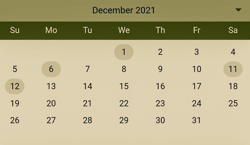 Hindu Pelli muhurthalu in December 2021