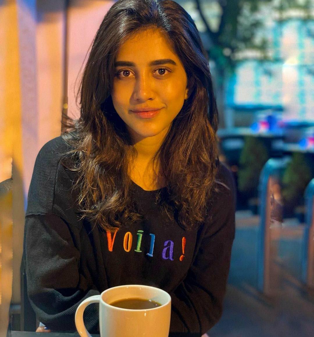 Nabha natesh without makeup